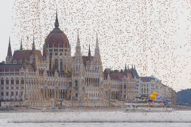 A Budapest il Danubio si tinge di giallo